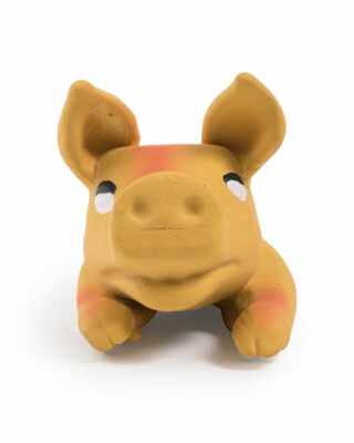 Rubber Tossable Pig Face
